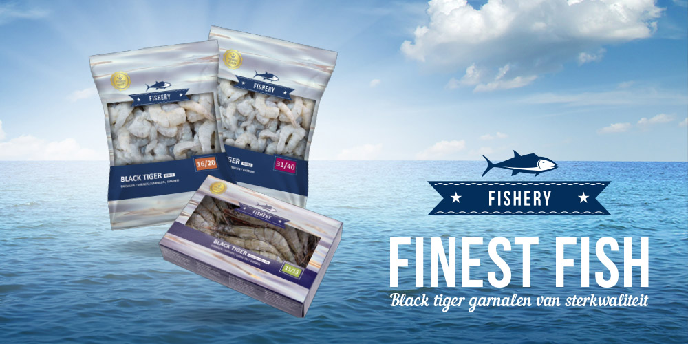 Fishery Prawns